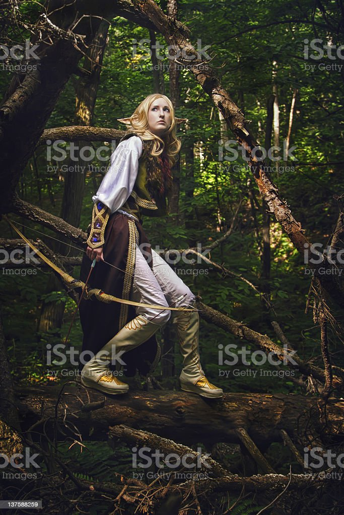 Elf holding a bow and arrow in the woods royalty-free stock photo
