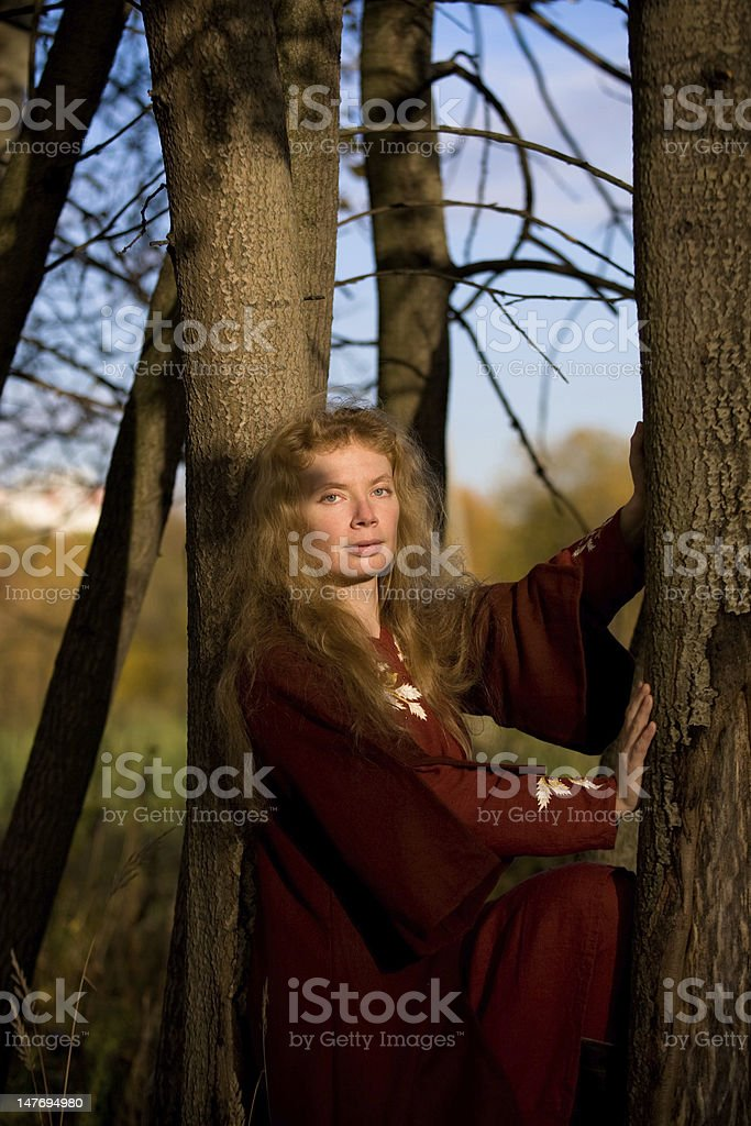 elf in autumn forest royalty-free stock photo