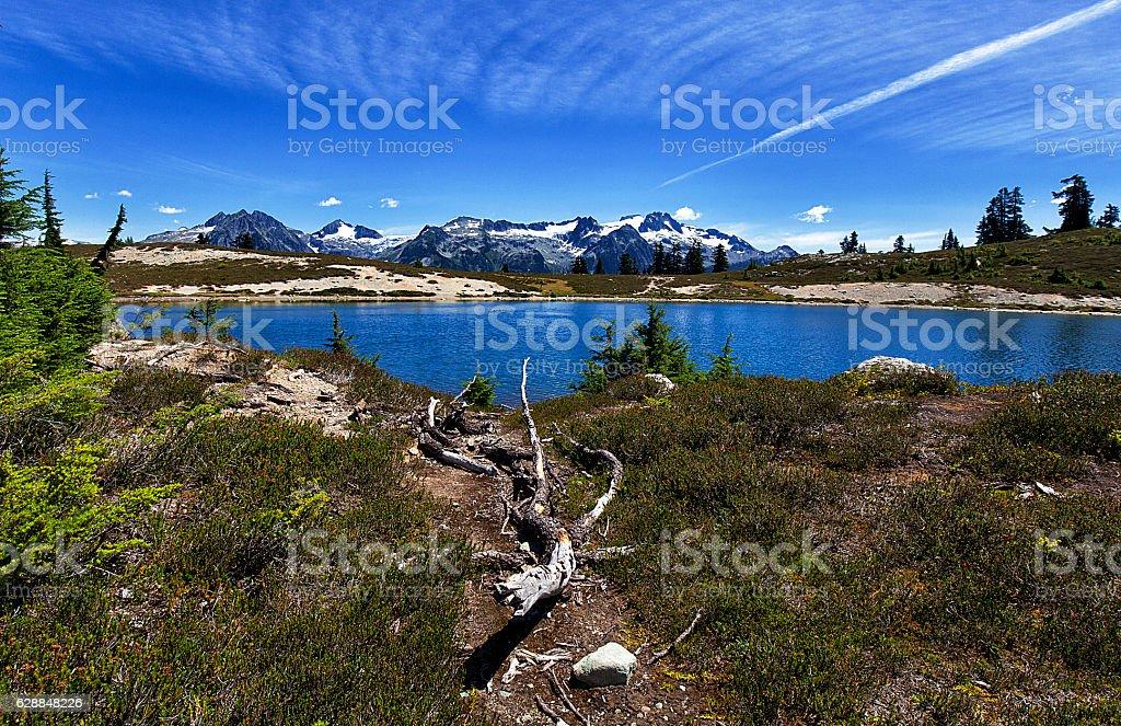 Elfin Lakes in summer, BC, Canada stock photo