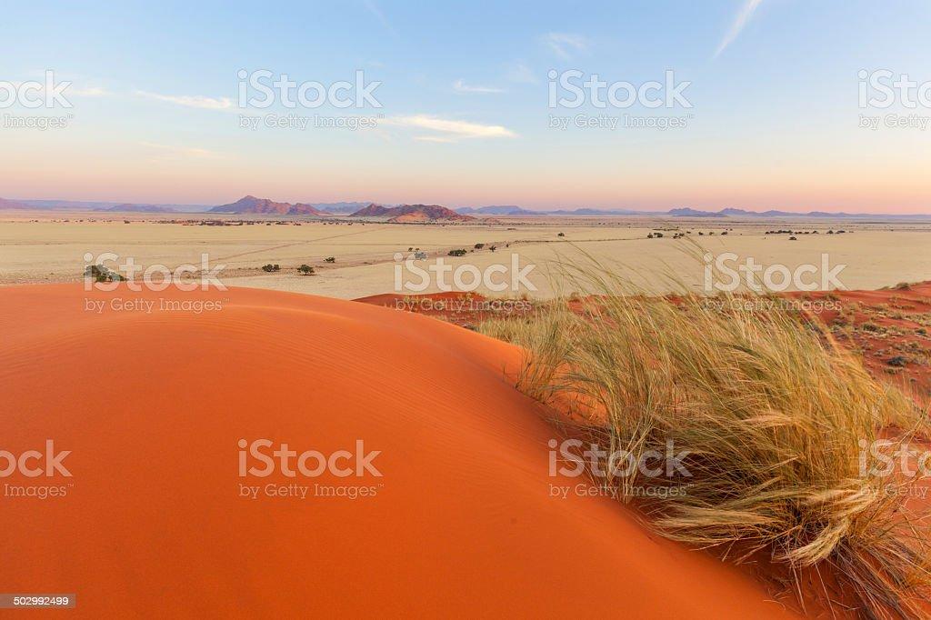 Elim Dunes near Sesriem stock photo