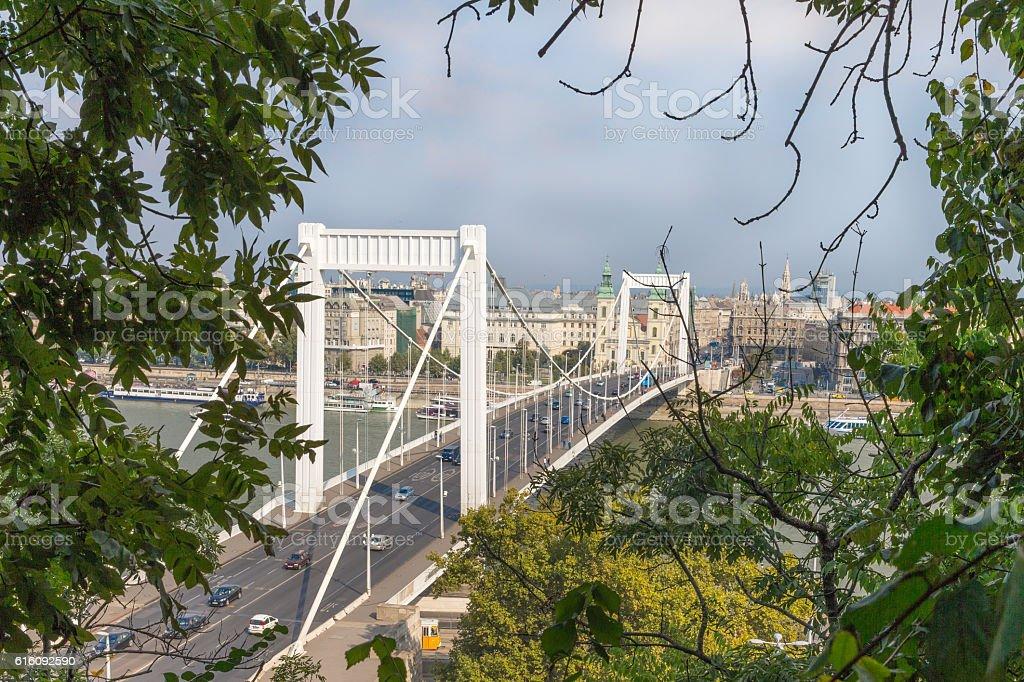 Elisabeth Bridge in Budapest, Hungary. Beautiful  bridges. Best  of .  over stock photo