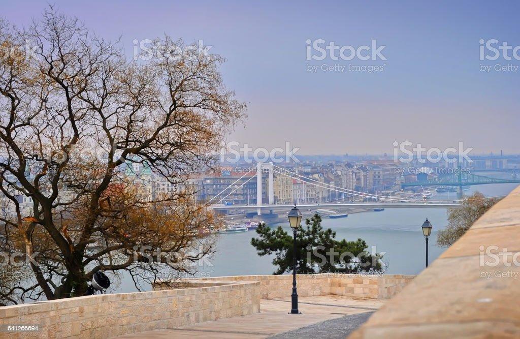 Elisabeth Bridge, river Danube and surrounding houses stock photo