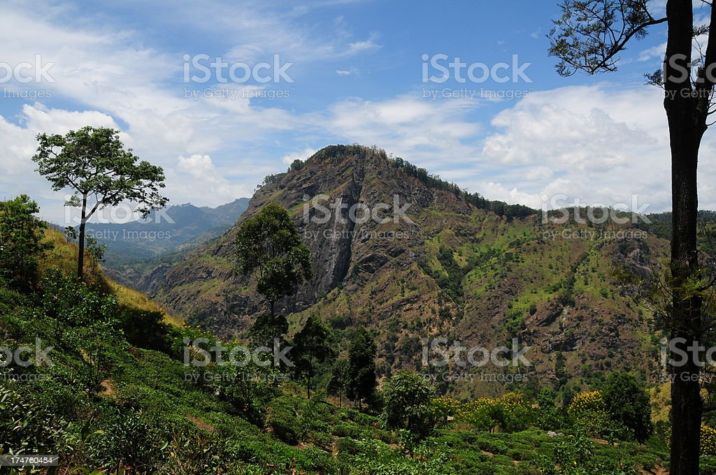 Ella,Hill country, Sri Lanka. royalty-free stock photo