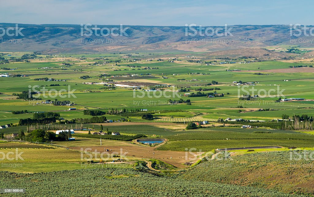 Ellensburg fields stock photo