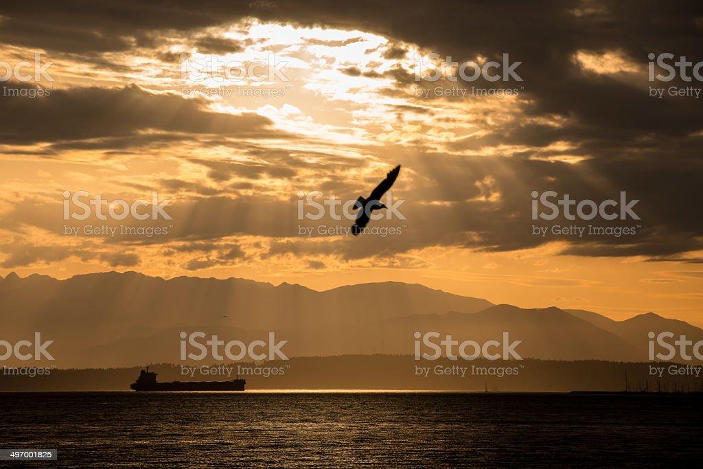 Elliott Bay royalty-free stock photo