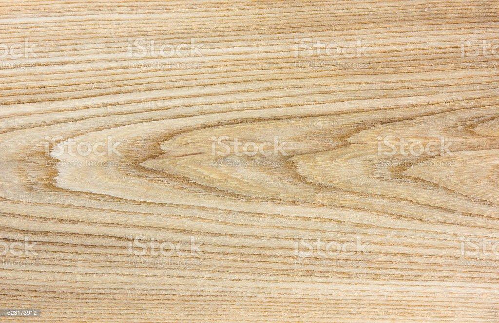 Elm wood texture - natural wood texture stock photo