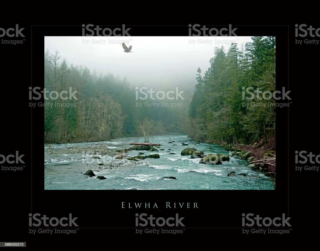 Elwha River poster before the dams were removed, winter stock photo