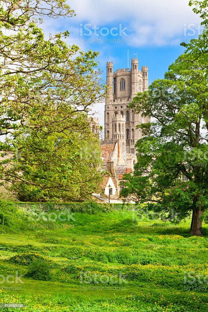 ely  cathedral in sunny spring day stock photo