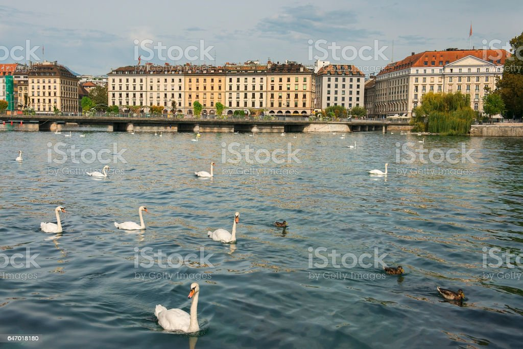 embankment of lake Geneva, Geneva, Switzerland stock photo