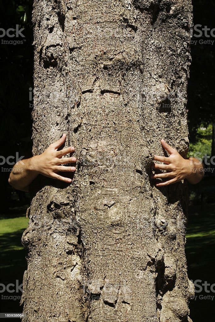 Embracing a tree trunk. royalty-free stock photo