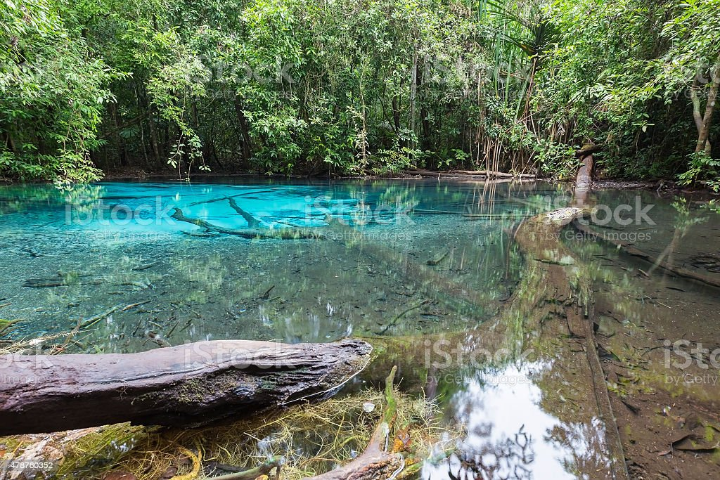 Emerald blue lagoon in deep Thailand National park stock photo