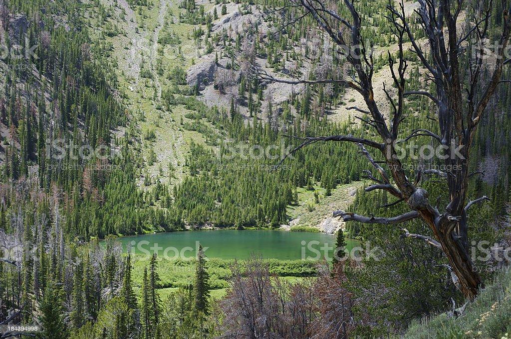 Emerald Green High Mountain Lake Shines in Summer Sun stock photo