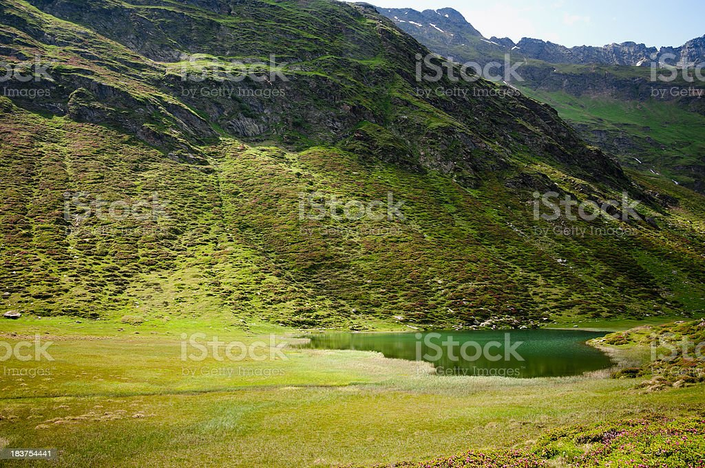 Emerald green lake in the Alps stock photo