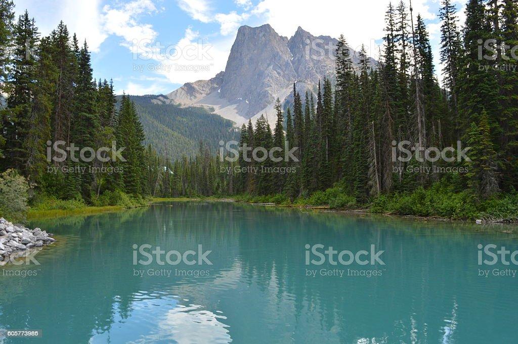 Emerald Lake in British Columbia stock photo
