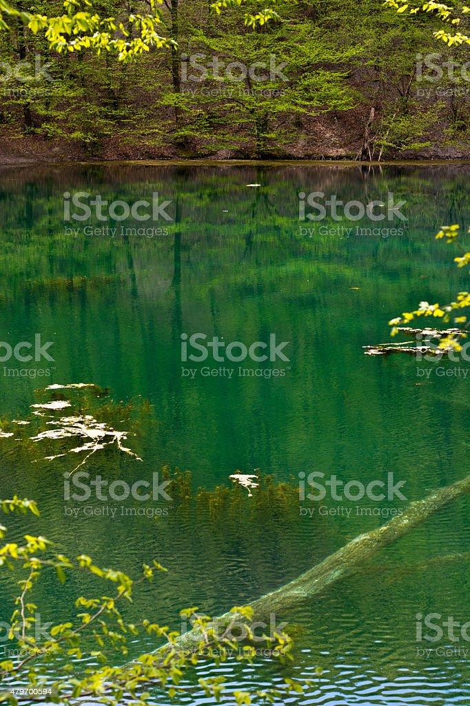 Lago esmeralda foto de stock libre de derechos
