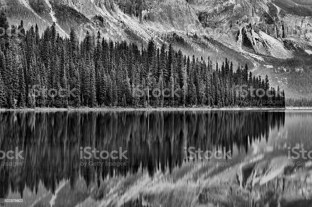 Emerald Lake Reflection stock photo
