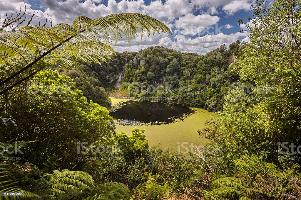 Emerald Lake, Southern Crater stock photo