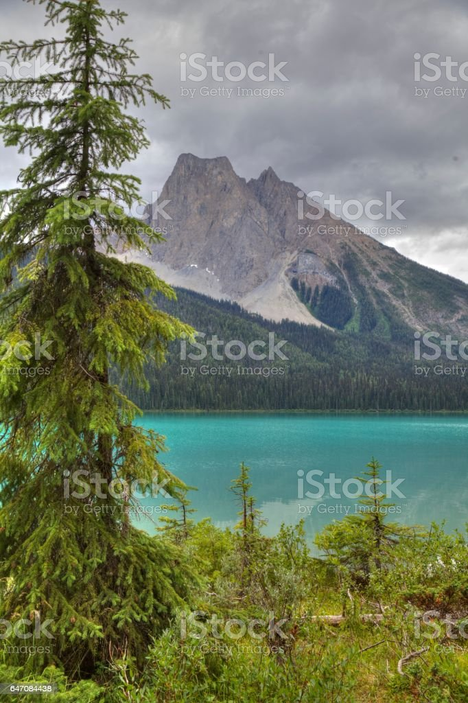 Emerald Lake, Yoho National Park, British Columbia, Canada. stock photo