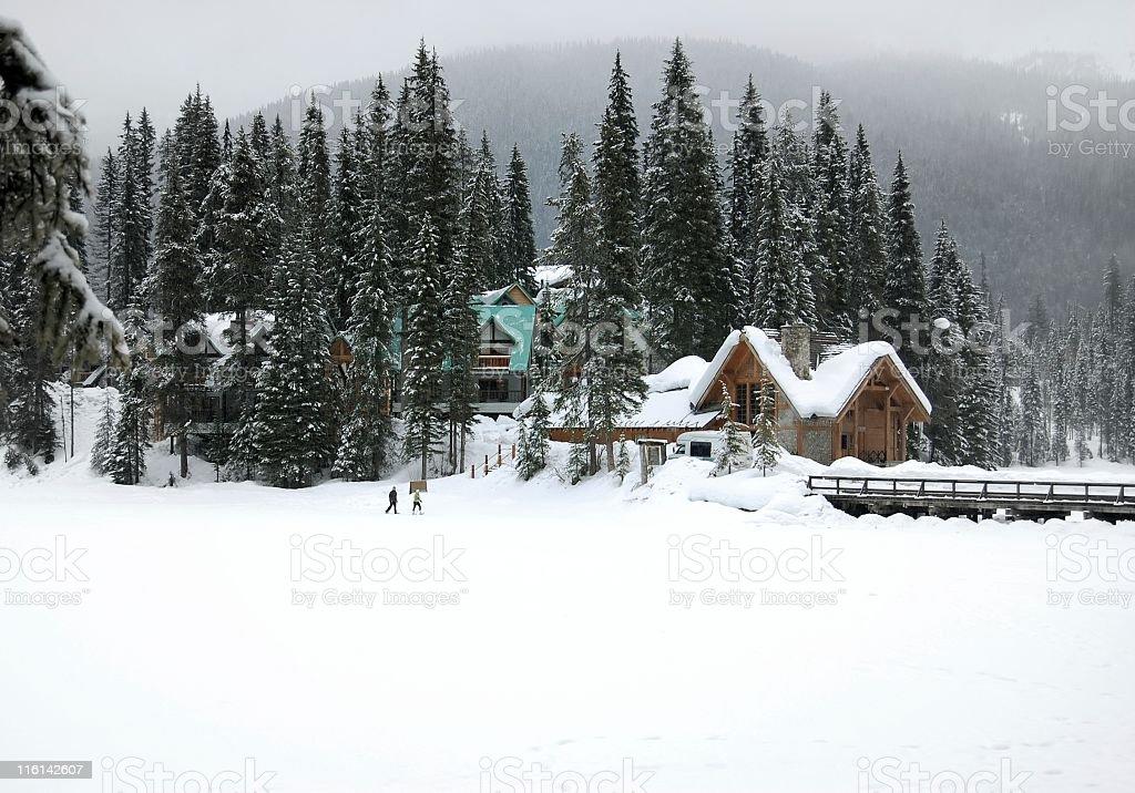 Emerald Lake,BC,Canada. stock photo