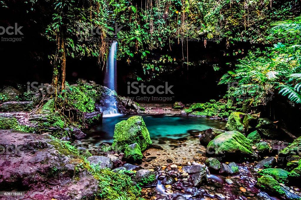 Emerald pool in jungle stock photo