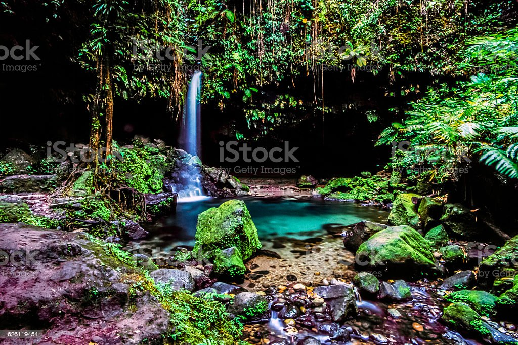 Emerald pool in jungle stock photo