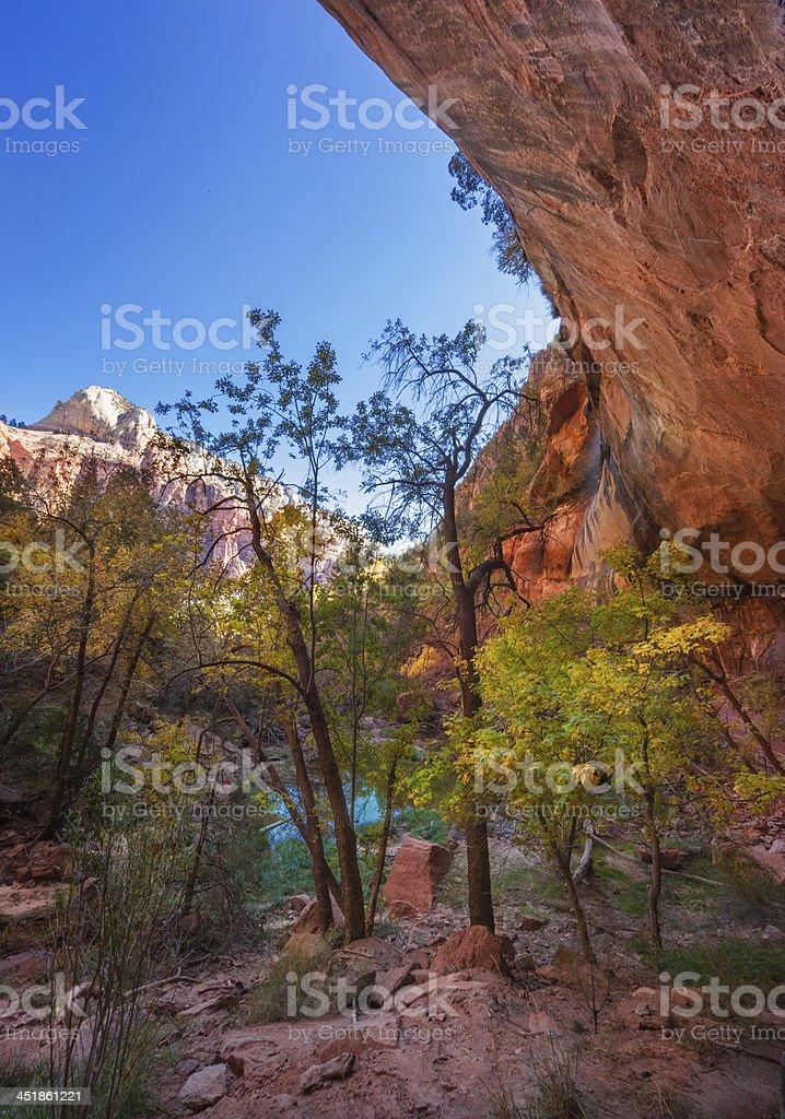 Emerald Pool, Zion stock photo