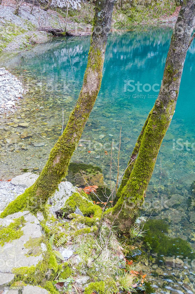 Emerald waters. stock photo