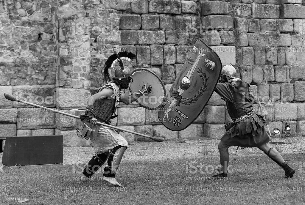 Emerita Ludica stock photo