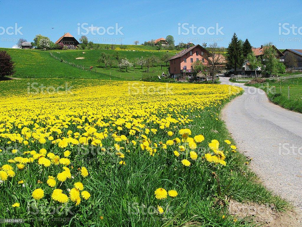 Emmental region, Switzerland royalty-free stock photo