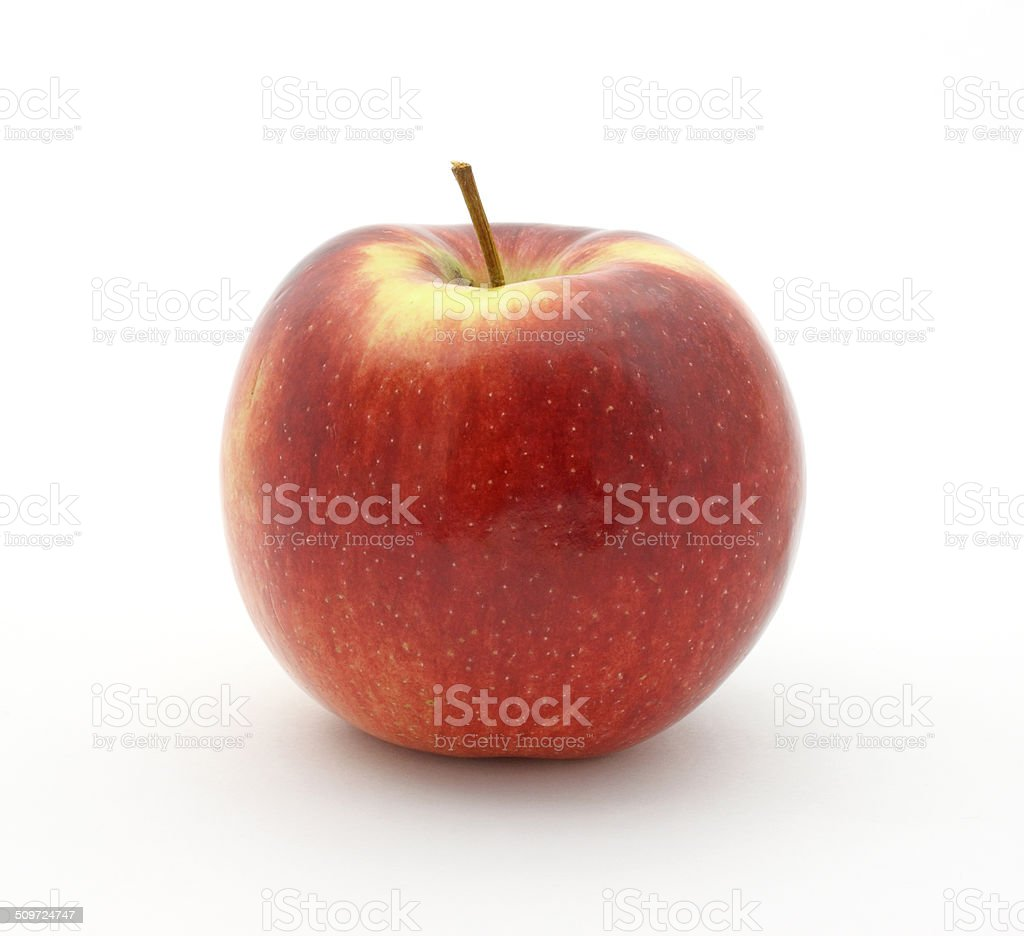 Empire apple on white background stock photo