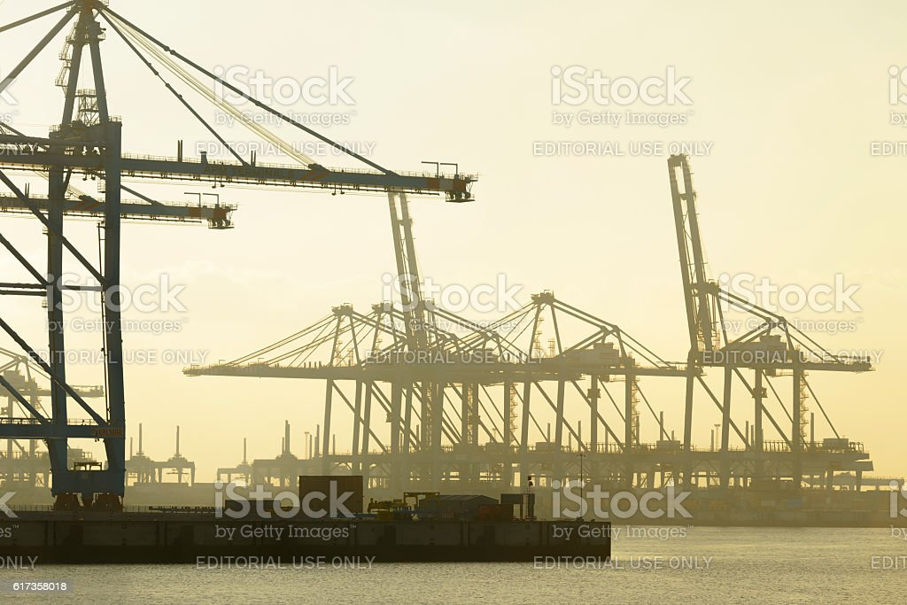 Empty APM container terminal in the port of Rotterdam stock photo