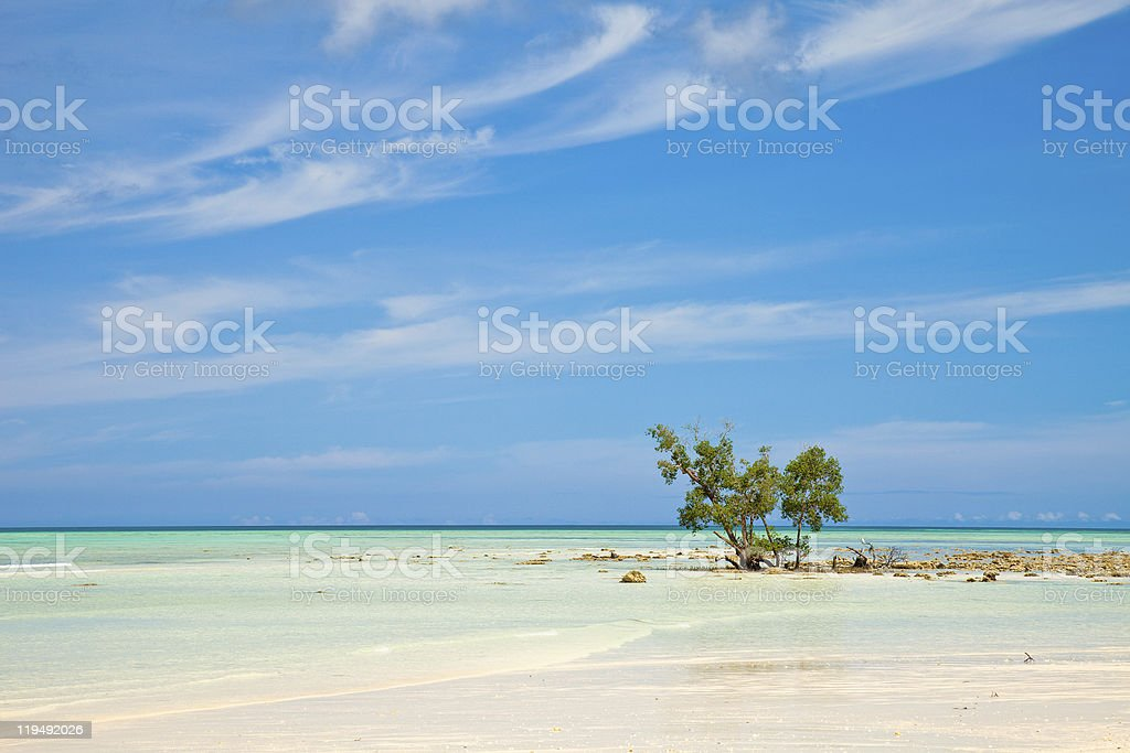 Empty Beach on Havelock Island stock photo