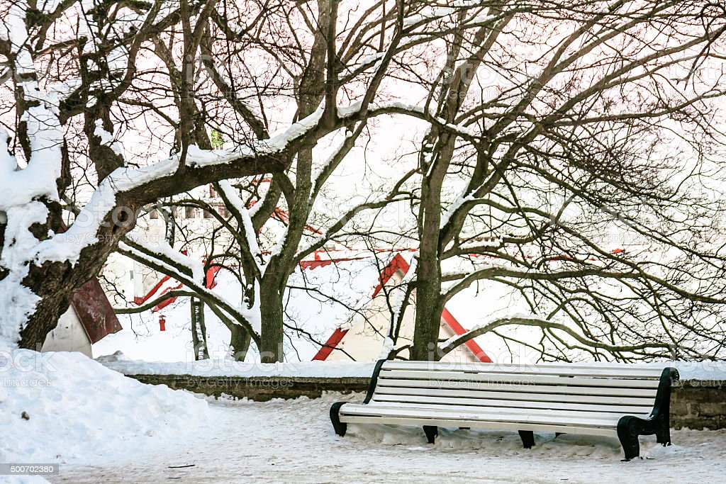 Empty Bench in the Winter Park stock photo