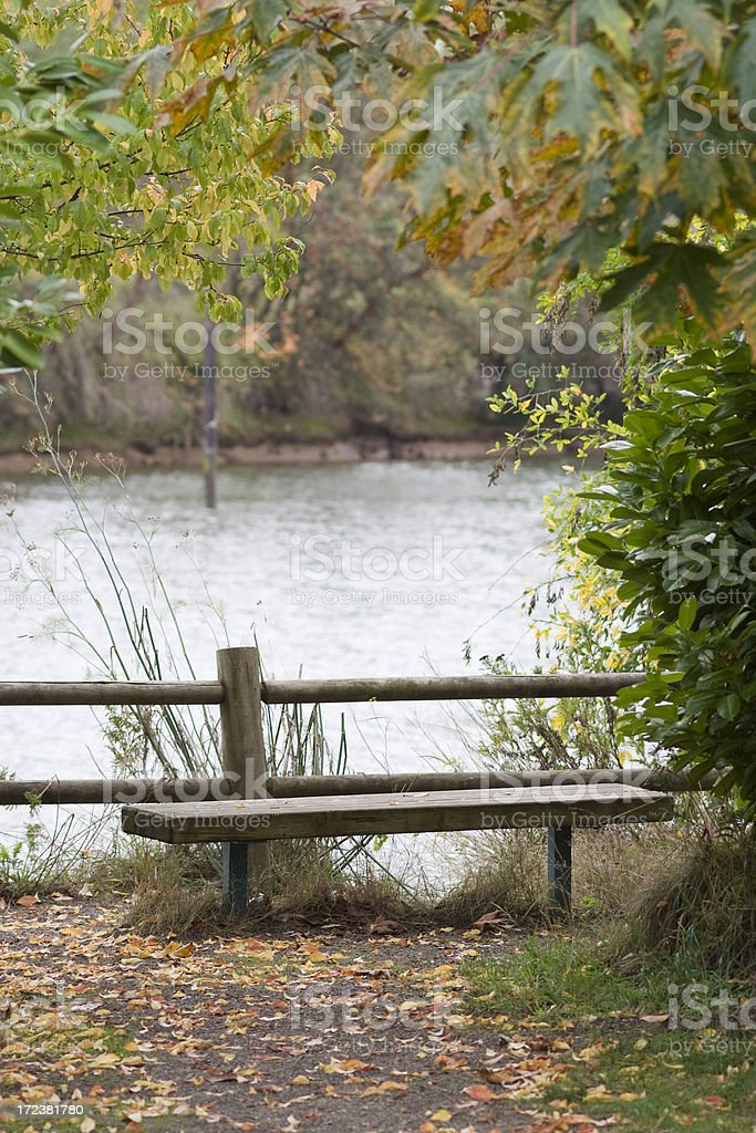 Empty bench with autumn leaves royalty-free stock photo