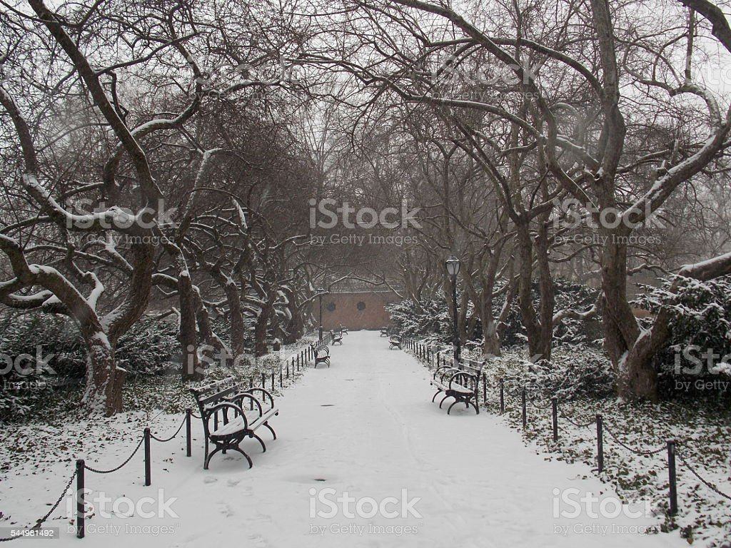 Empty Benches and Bare Trees in Snowy Park stock photo