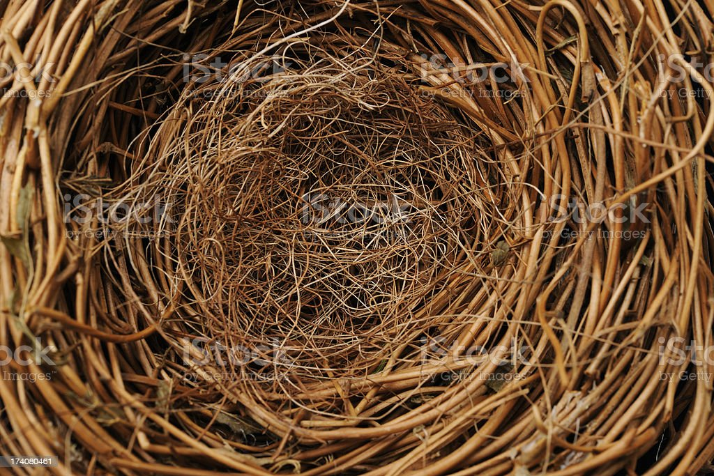Empty bird's nest background stock photo