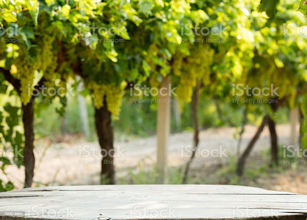 Empty blue table for wine in vineyard. stock photo