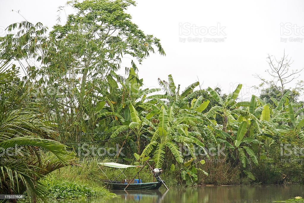 Empty boat in the jungle royalty-free stock photo