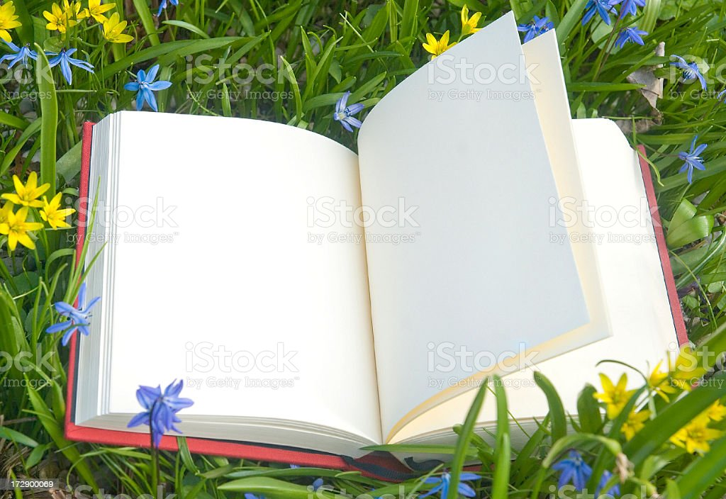 empty book in spring meadow stock photo