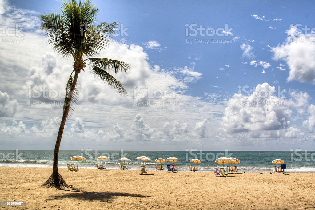 Empty chairs at the beach stock photo