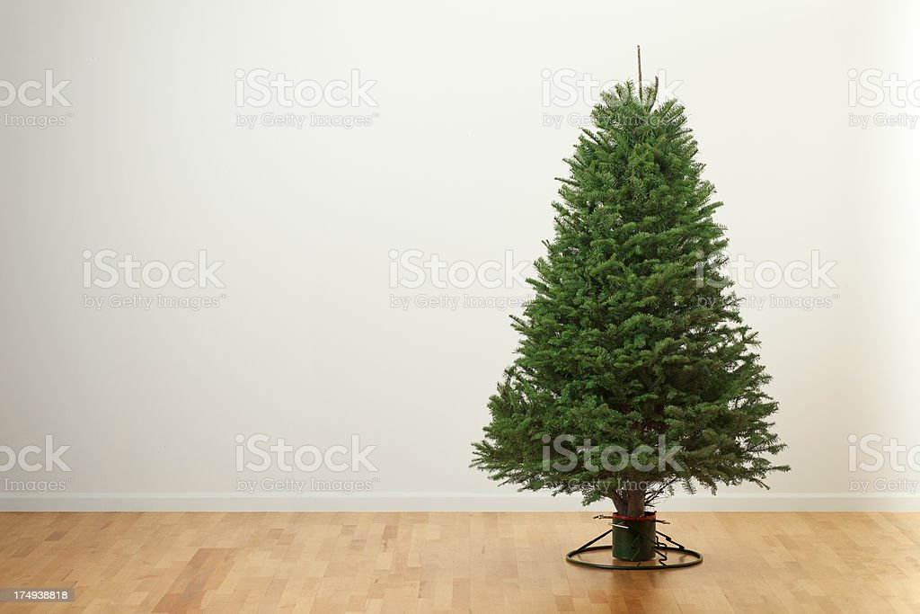 Empty Christmas Tree in the Living Room stock photo