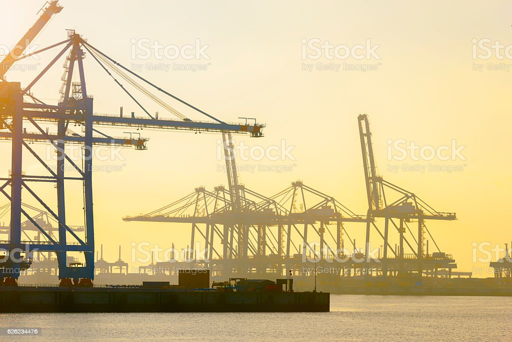 Empty container terminal in port during sunset stock photo