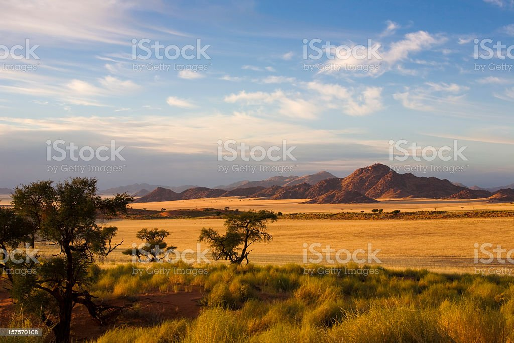 A empty country view of a field and trees stock photo