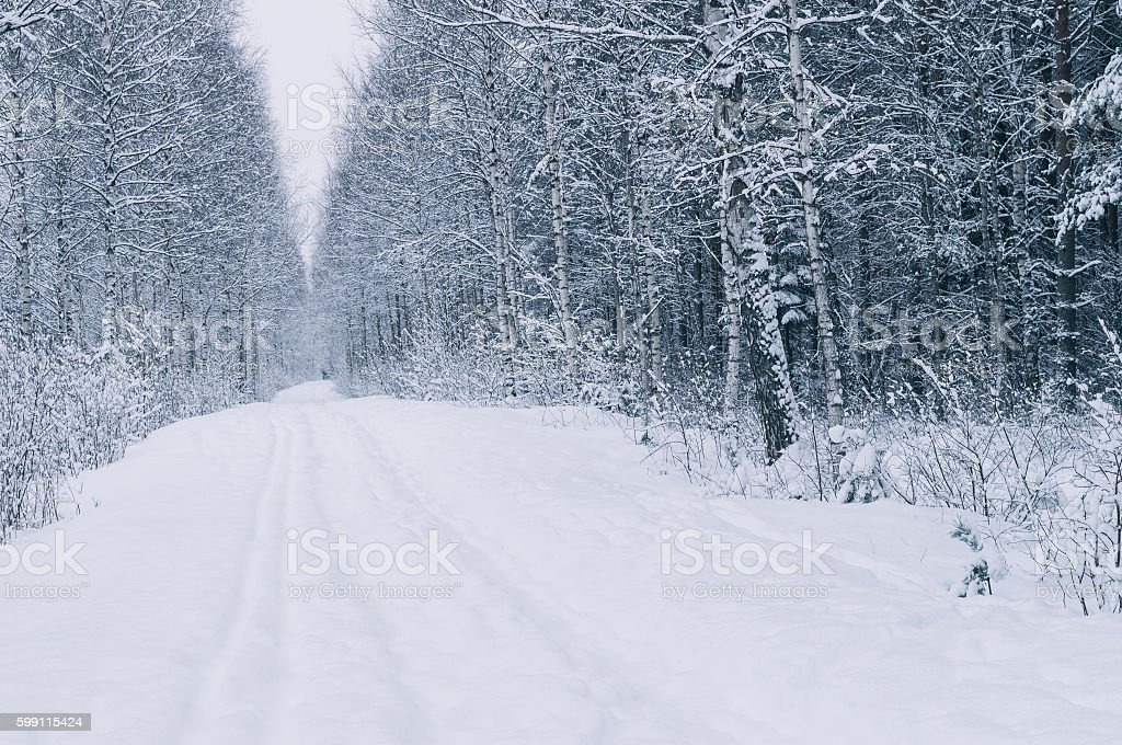 Empty countryside road after snowstorm stock photo