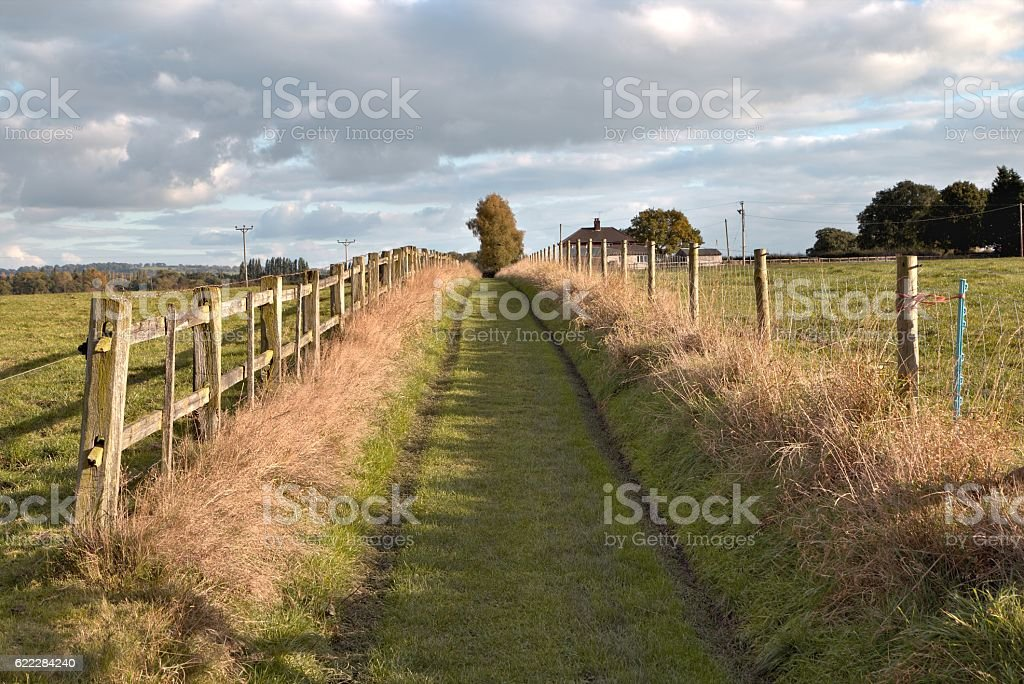 Empty countryside road through fields, stock photo