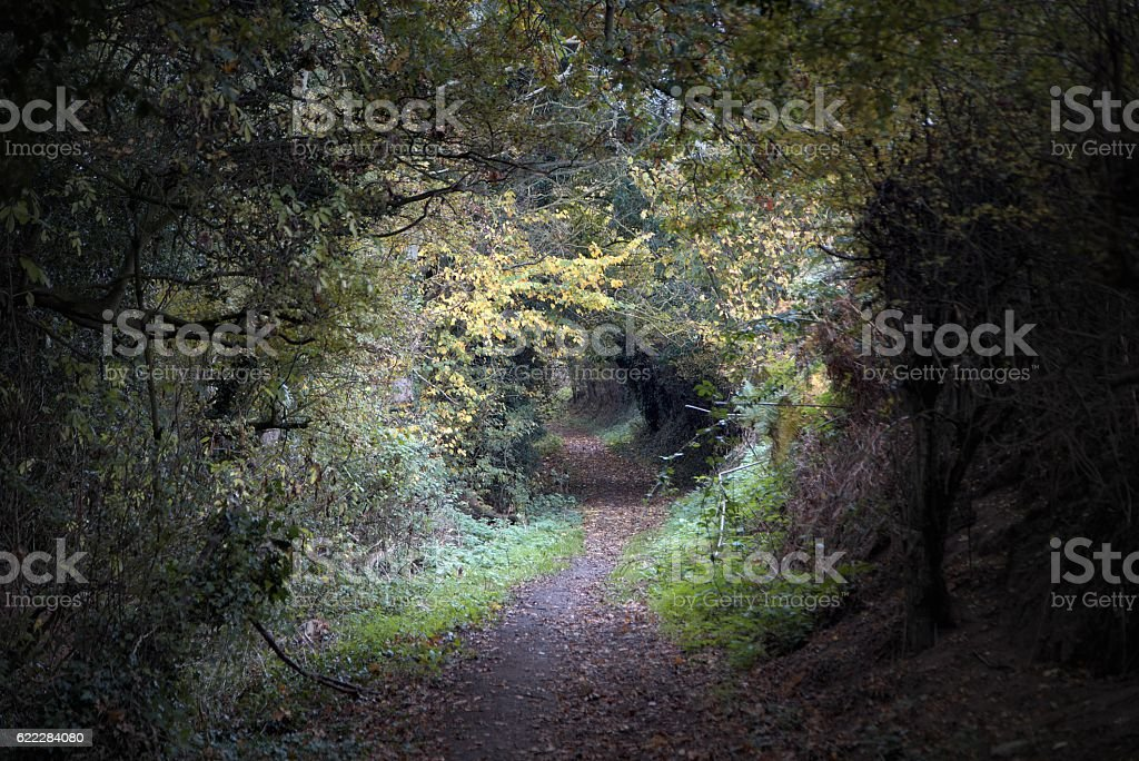 Empty countryside walking track. Baker Path, Tarvin, Cheshire, E stock photo