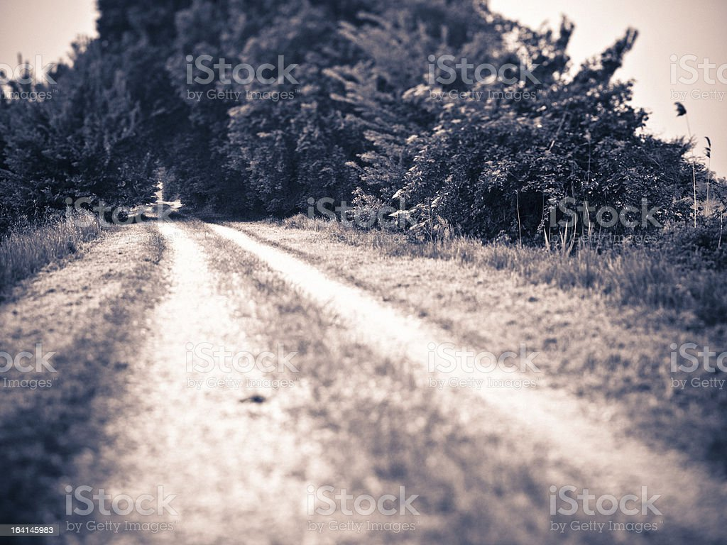 Empty Dirt Road royalty-free stock photo