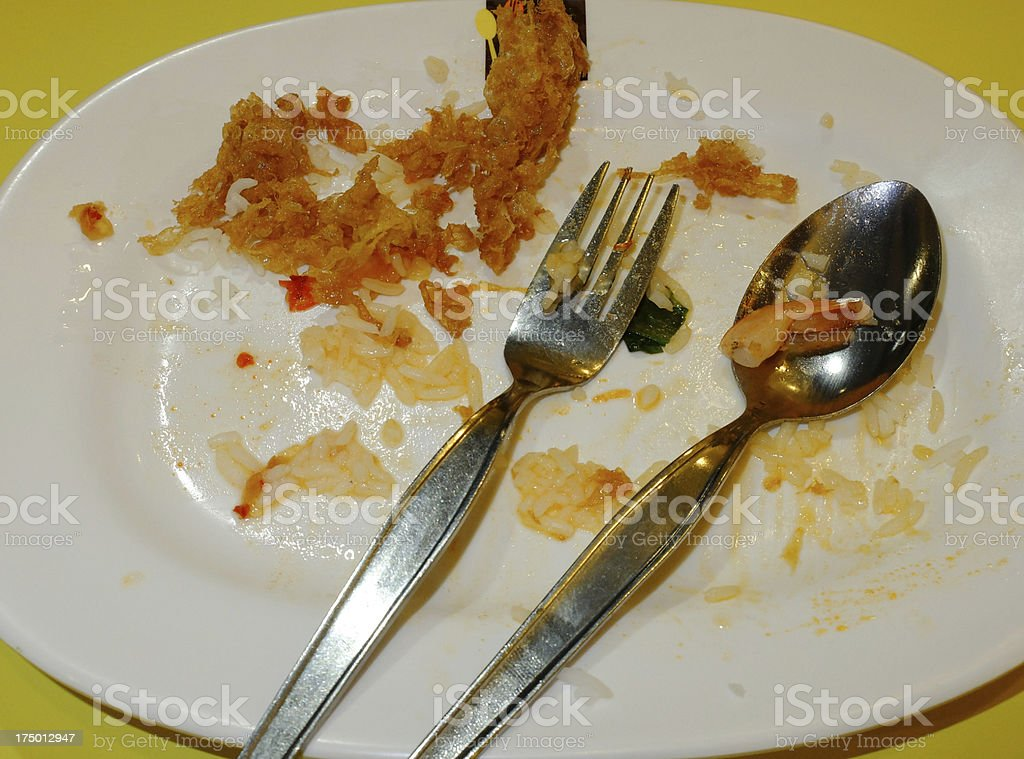 Empty dish after food royalty-free stock photo