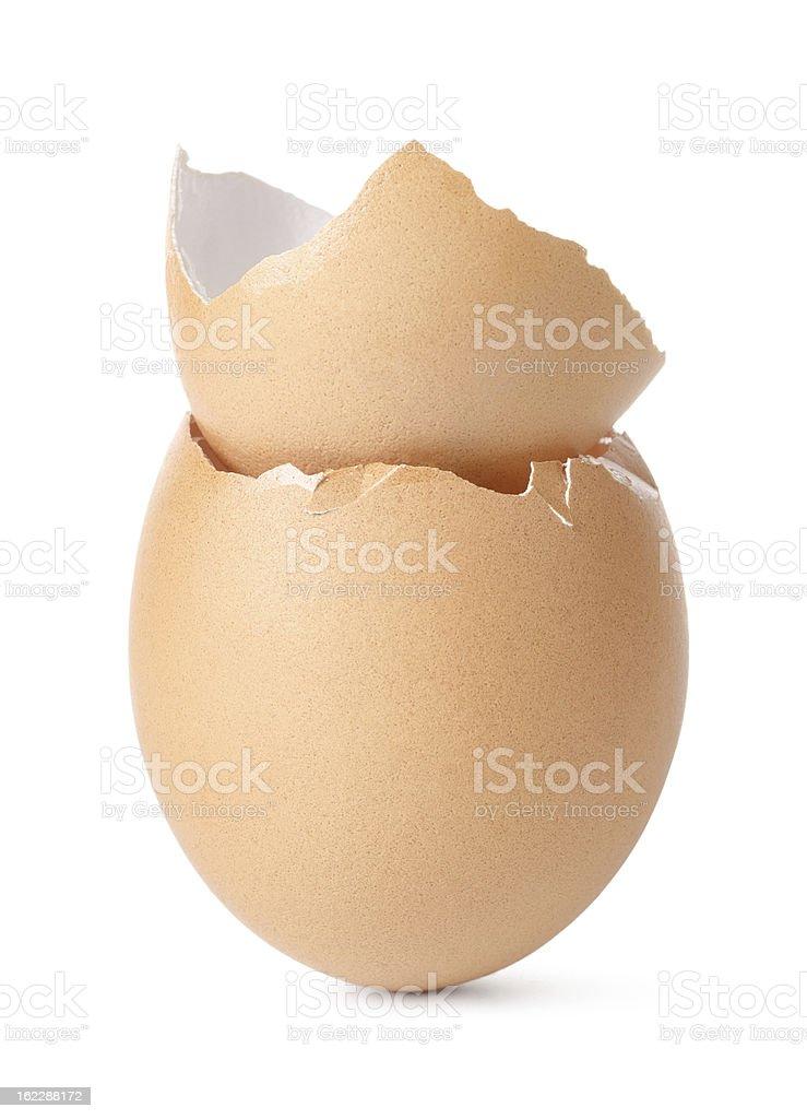 Empty eggs royalty-free stock photo