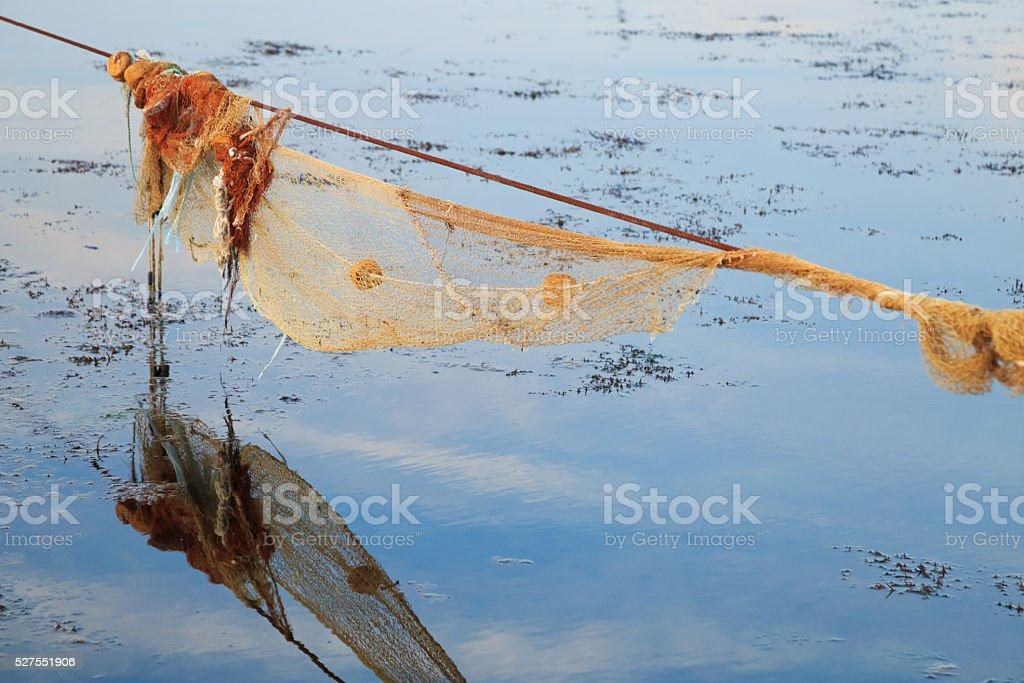 Empty fishnet for mussel in the sea at sunset stock photo